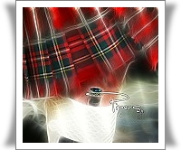 pipers 2010